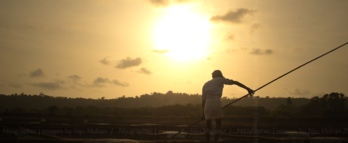 Salt pans in Goa
